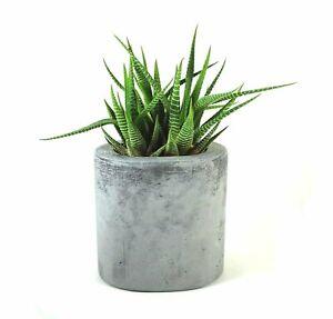 Oval-Concrete-Pot-Vase-Succulent-Cement-Handmade-Flowerpot-Home-amp-Garden-Gray