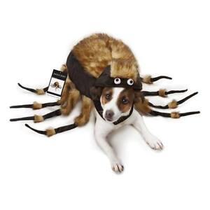 Tarantula-Fuzzy-Spider-Dog-Halloween-Costume-USA-Seller-All-Sizes-Zack-amp-Zoey