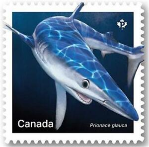 "2018 Canada 📭🦈 BLUE SHARK Stamp 🦈 ""P"" Single MNH 🦈📬"