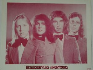 Hedgehoppers-Anonymous-Publicity-Photo