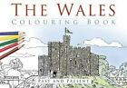 The Wales Colouring Book: Past & Present by The History Press Ltd (Paperback, 2016)