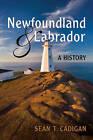 Newfoundland and Labrador: A History by Sean T. Cadigan (Paperback, 2009)