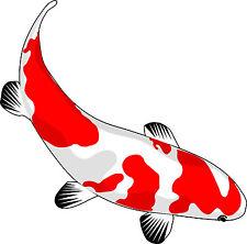 Framed Print – Japanese Koi Carp Fish (Picture Pond Animal Asian Aquarium Art)
