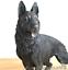 Large-22cm-German-Shepherd-bronze-effect-ornament-figurine-Alsatian-lover-gift thumbnail 3