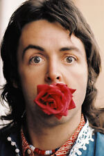 "The Beatles Paul McCartney 13 x 19"" Photo Print"
