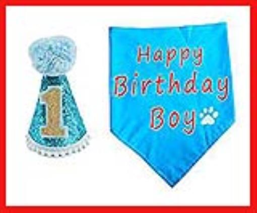 BIPY Dog 1st Birthday Hat and Bandana Set for Boys Small Medium Large Dogs Cats