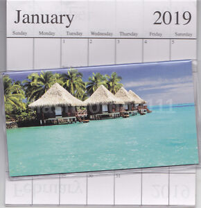 image is loading 1 2019 2020 tropical beach 2 two year