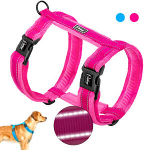 Velvet Padded H Style Dog Harness Reflective Adjustable Winter Dog
