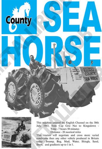 Fordson condado Caballito de mar-Poster (A3) - (3 para 2 Oferta)