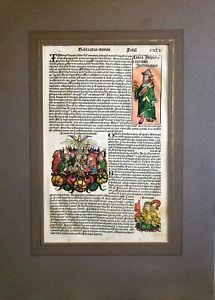 "Antique Nuremberg Chronicle Leaf Page Woodcut ""Berta etas Munoi"" Folin CXLV"