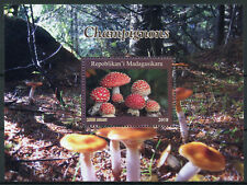 Madagascar 2018 CTO Mushrooms Fly Agaric 1v M/S Champignons Fungi Nature Stamps