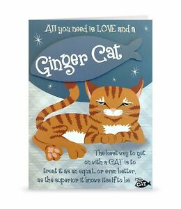 Image Is Loading Ginger Cat Funny Cute Blank Greeting Card Birthday