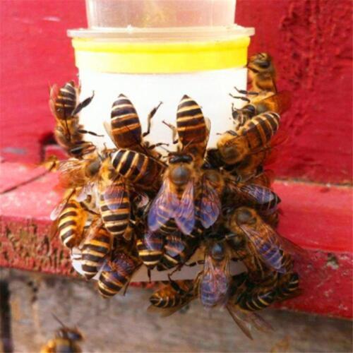 Bienen Wasser Zufuhr 10 Stück Zufuhr Bienen Trinkwasser Ausrüstung
