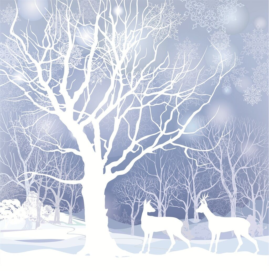 3D 3D 3D Snow Scenery 798 WallPaper Murals Wall Print Decal Wall Deco AJ WALLPAPER 7c8167