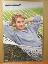 vintage 1999 Dawson's Creek original hammock poster 6628