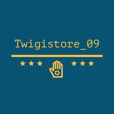 twigistore_09