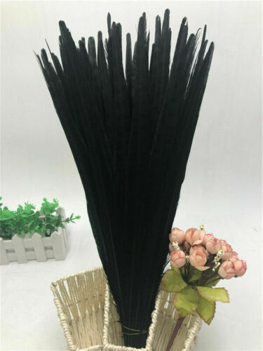 25-55 cm High quality 5-100 pcs natural pheasant tail feathers 10-22 inches