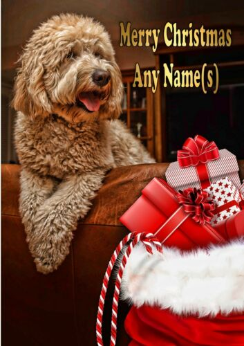 Personalised Labradoodle Christmas Card with illustrated insert  A5 size