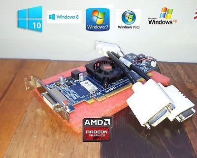 HP Compaq Pro SFF 3010 4000 4300 6000 6005 6200 6250 6300 Dual VGA Video Card