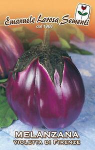300-Semi-Seeds-MELANZANA-Tonda-Violetta-di-Firenze
