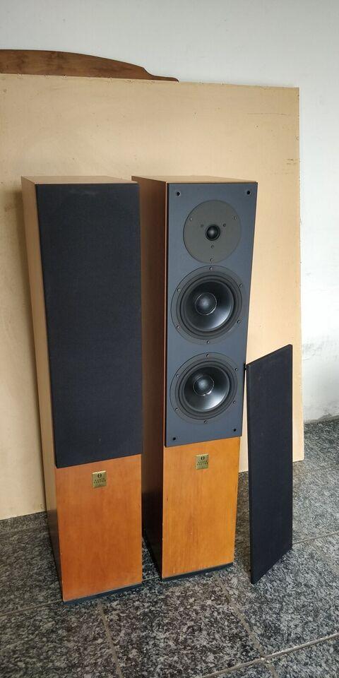 Højttaler, Audiovector