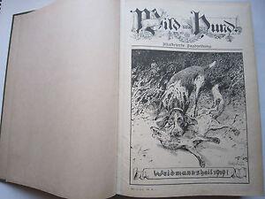"""Clever """"wild Und Hund"""" 25 Jahrgang Januar Dezember 1919 Hege,pirsch"""