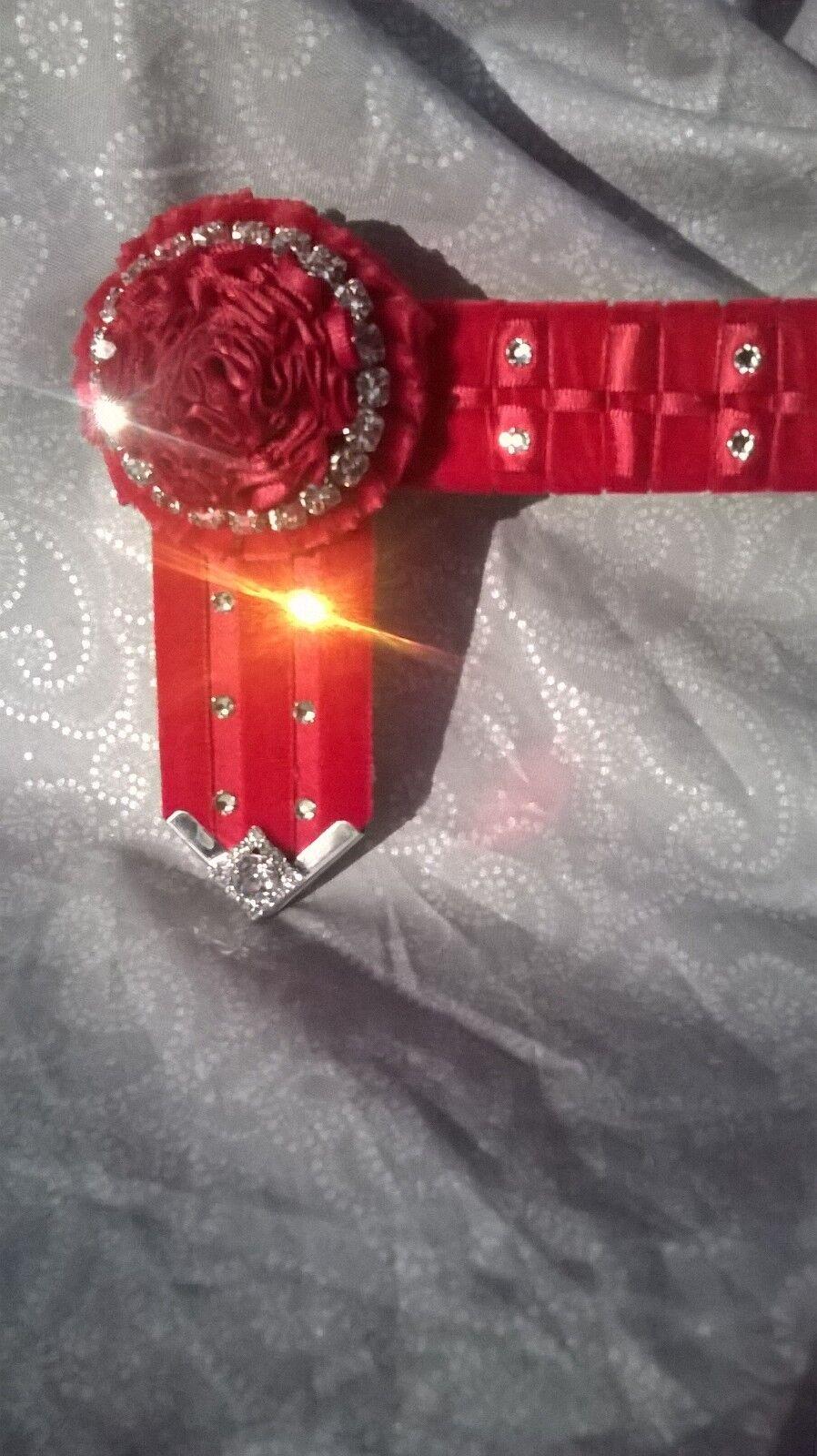 Gli eleuominiti della barra multidivertiuominitozione Equestre mostrare Fascia Sopracciglio COMPLETO 16 Lilly Nastro Fascia Sopracciglio
