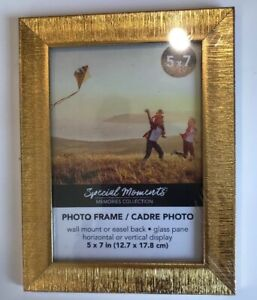 NEW-5-x-7-Gold-Picture-Frame-by-Special-Moments-Memories-Collection-Photo-Feame