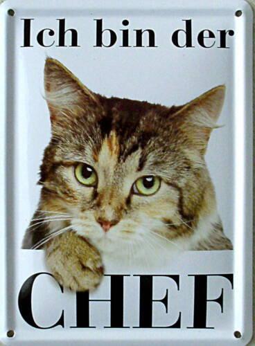 Mini-Blechschild Ich bin der Chef Katze 8 x 11 cm