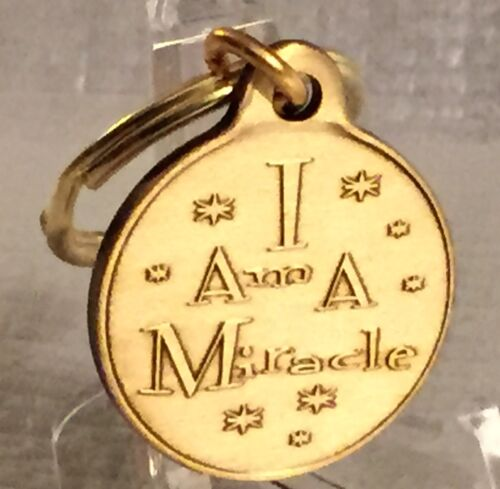 Butterfly I Am A Miracle Bronze Key Chain AA NA Keychain Fob Tag 1 Inch Charm