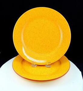 Val-Do-Sol-Portugal-2PC-Terra-Cotta-Amarillo-Orange-Moteado-10-2-2cm-Platos-Cena