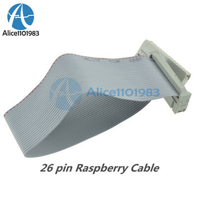 1Pcs Flat Ribbon Cable Wires 26 Pin 2.54MM Picth 200Mm For Raspberry Pi Gpio qv