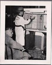 VINTAGE 1940'S PURINA PIGEON CHOW BIRD FOOD LITTLE ROCK ARKANSAS OLD PHOTO