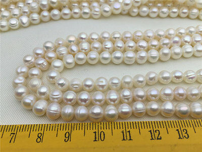 6-7mm Lilac Blue Lavender Button Rondelle Freshwater Pearls Beads AA