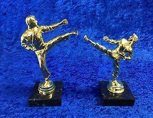 Martial-Arts-Gold-Figure-Trophy-Award-Karate-Judo-Kick-Boxing-FREE-engraving