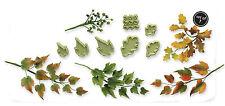 JEM Cake Icing Sugarcraft Floral Florist Foliage Mixed Leaves Leaf Cutter Set 3