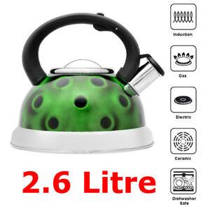 2.6 L Vert Sifflement Bouilloire Pichet En Acier Inoxydable/design 3d/pour Camping Pêche-afficher Le Titre D'origine Pssmc0xm-10034729-564718820