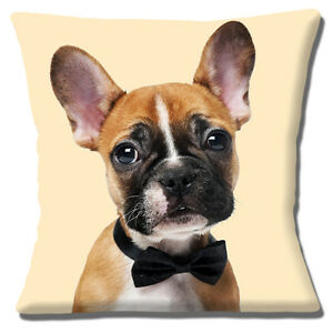 Fawn-French-Bulldog-16-034-x16-034-40cm-Cushion-Cover-Photo-Print-Wearing-Black-Bow-Tie