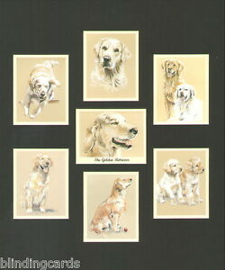 Perikim Collectors Trading Card Set of 7 THE BOXER Art pictures Dog Breeds