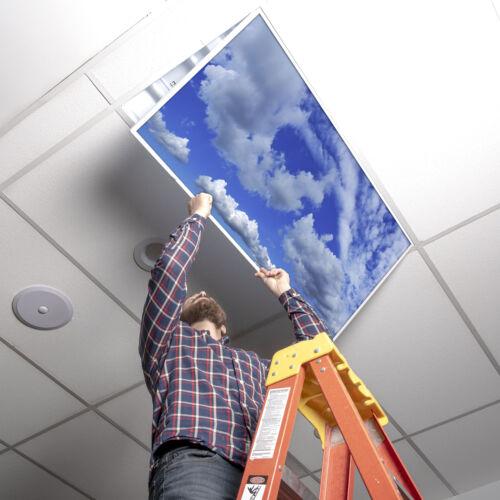 Fluorescent Light Covers Home School Cloud Octo Lights 007 Office