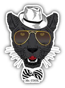 Cool Panther Boy Face Car Bumper Sticker Decal 4 X 5