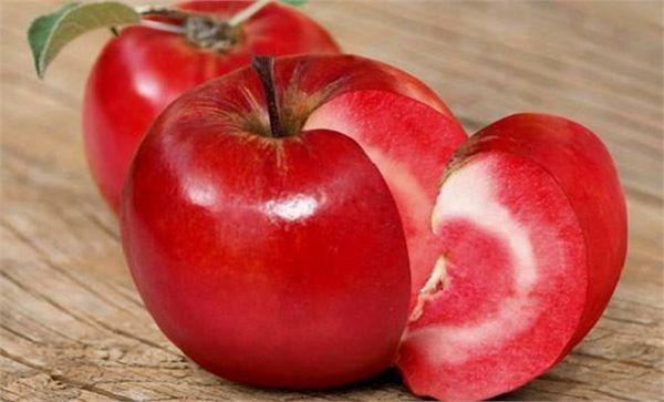 5 Rojo Amor Apple Esquejes (Malus Domestica) de Turquía
