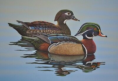 Canadian Geese Print 11 x 14 by Doug Walpus Wildlife Art Wall Decor Signed