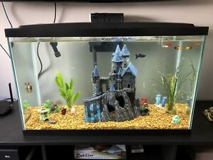 30-Gallon-Fish-Tank-w-Furniture-Piece-Filter-Heater-amp-Everything-In-Pics