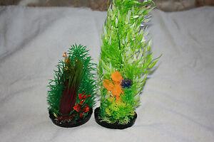 Plantes pour aquariums d'aquarium X 8 Kockney Koi