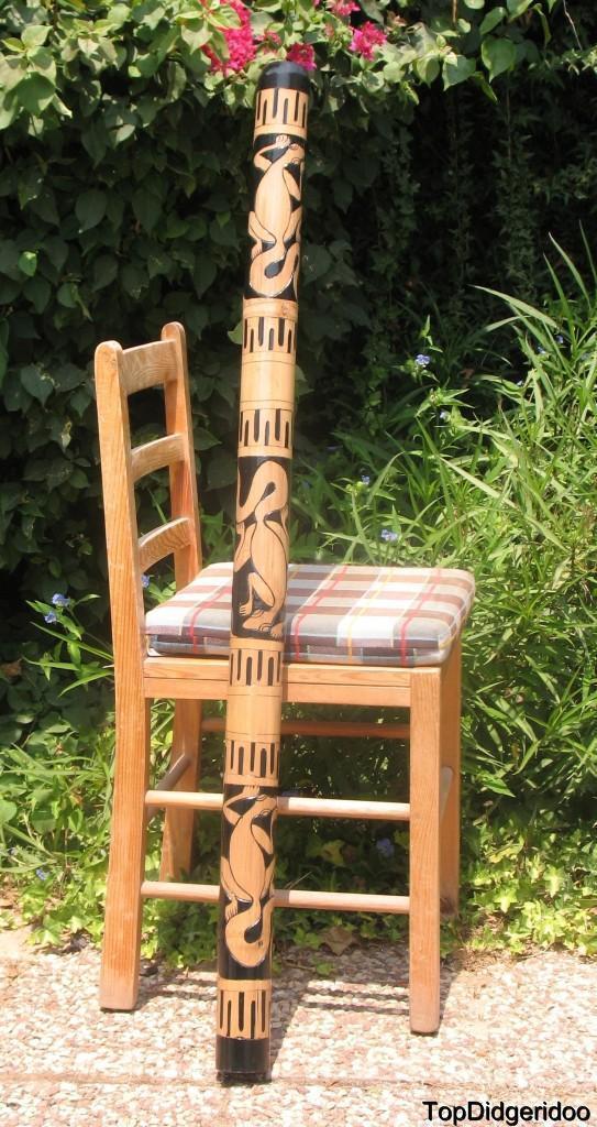 47  \ 120cm Didgeridoo Native Eidechsen Hand-Carving Artwork+Tasche+Bienenwachs