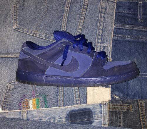 Nike Sb Dunk Low Blue Moon Sz 9.5