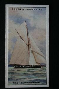 BLOODHOUND-Cutter-Yacht-Superb-1930-039-s-Vintage-Card