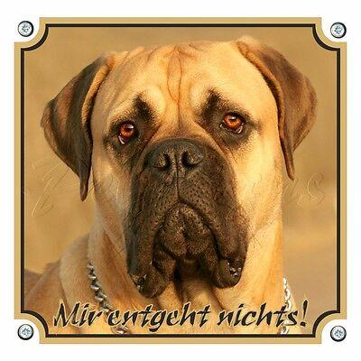 Bullmastiff - Hundewarnschild - Top Qualität - Quadrat In 2 Größen Mangelware
