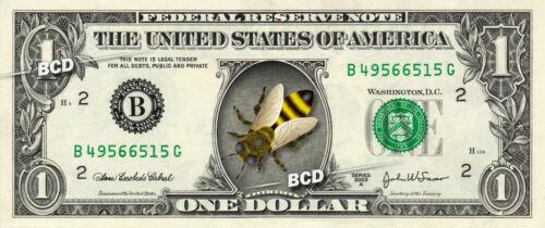 5  Honey bee swarm lure attract free bees beekeeper secret pheromone scent bait